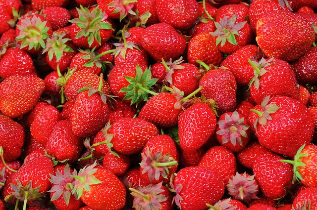 lots of red strawberries