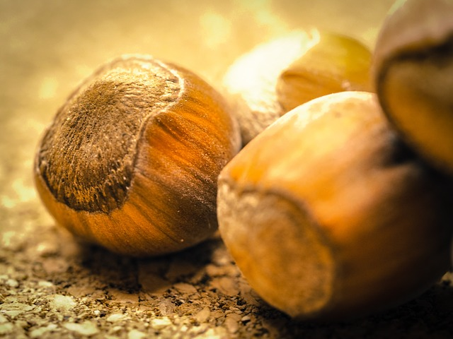 How Many Hazelnuts a Day Should You Eat To Get Significant Health Benefits