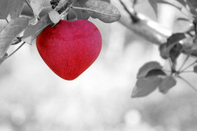 Benefits of Apples for Heart