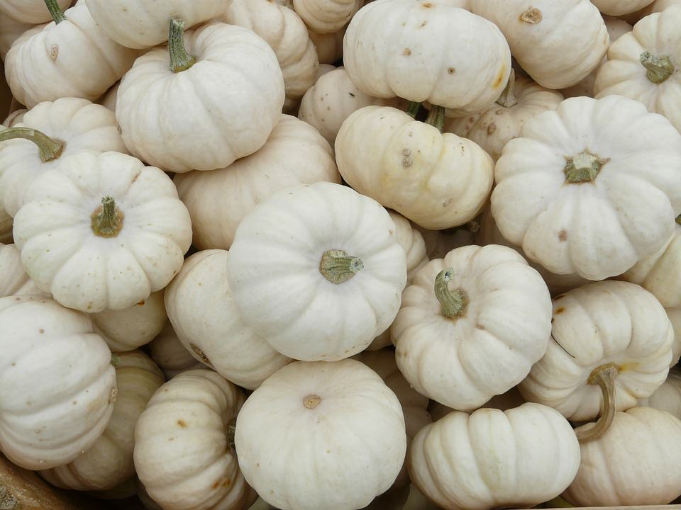 23 Health Benefits & Uses Of White Pumpkin & Side Effects