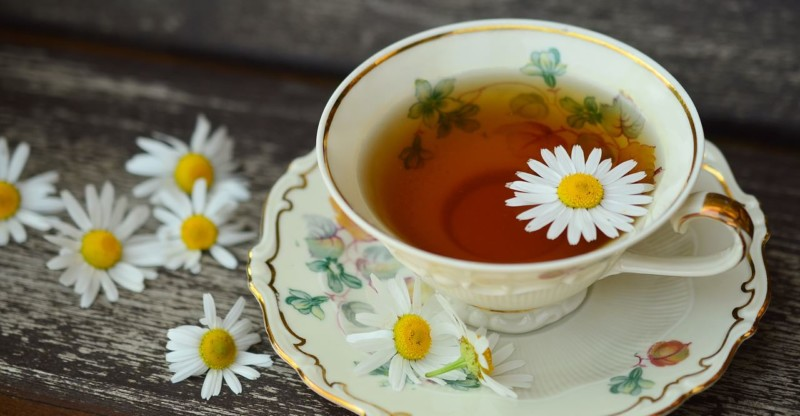 Chamomile Cup Tee Porcelain Drink Decor Break Still Life